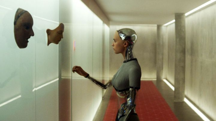 The only thing poorer than the selection at Redbox is the selection of faces the Ex-Machina lady has in this scene.