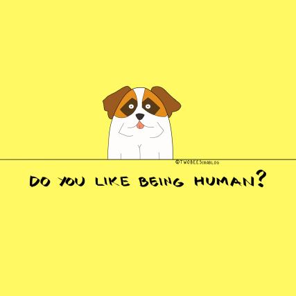 gift design dog drawing saint bernard cute funny silly gift tshirt yellow girls teens