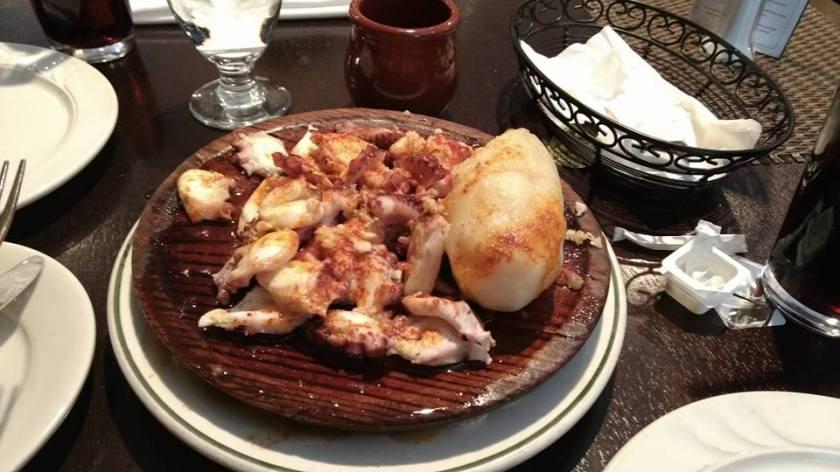 squid food